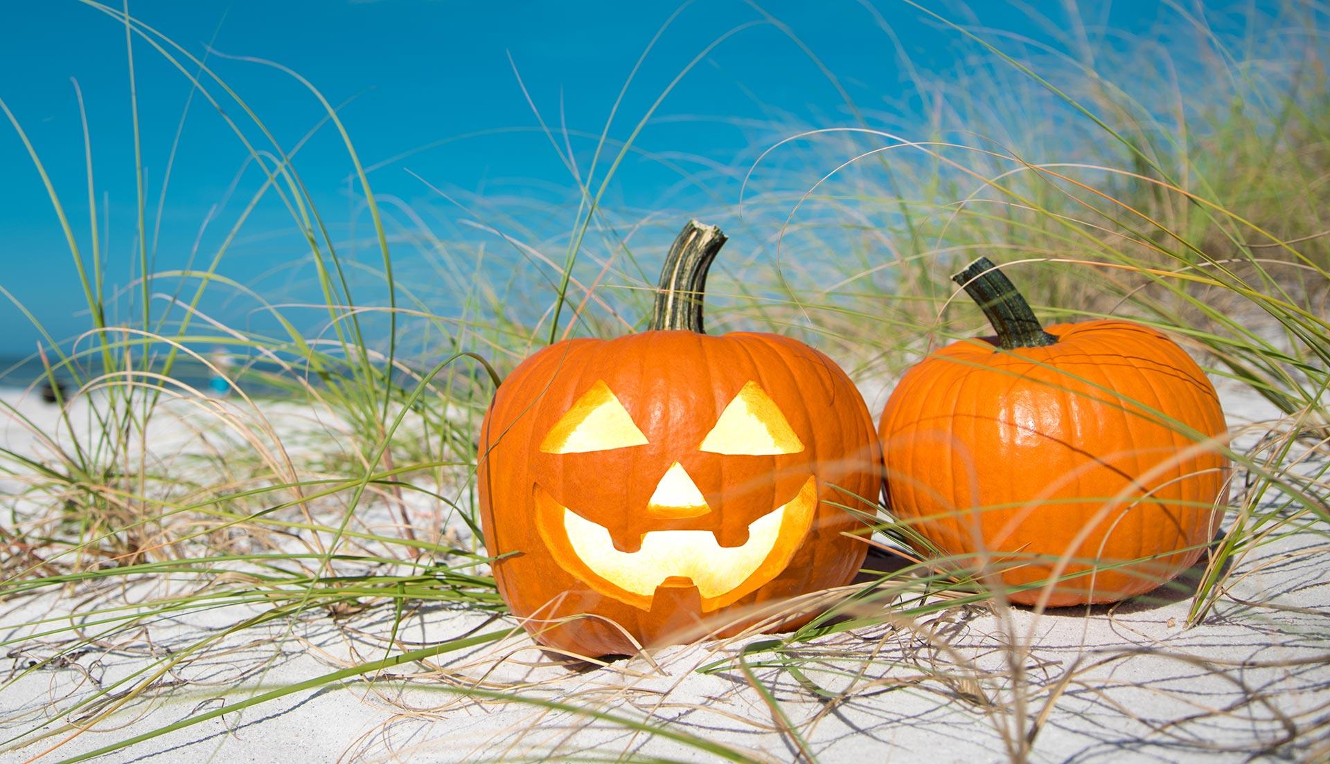 Halloween in Sandbridge - Sandbridge Life