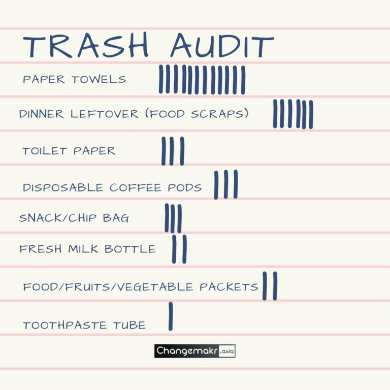 Trash Audit step 2
