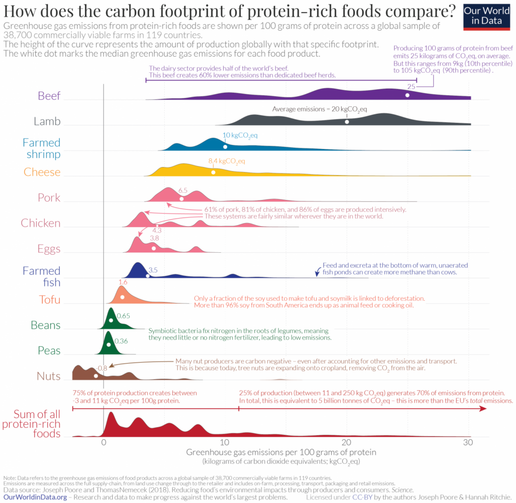 Carbon Footprint of Protein Food (source : Our World In Data