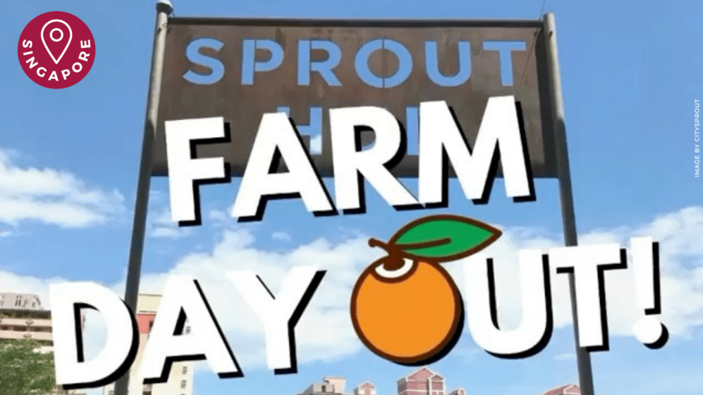 City Sprouts Farm Day Out   ChangeMakr Asia