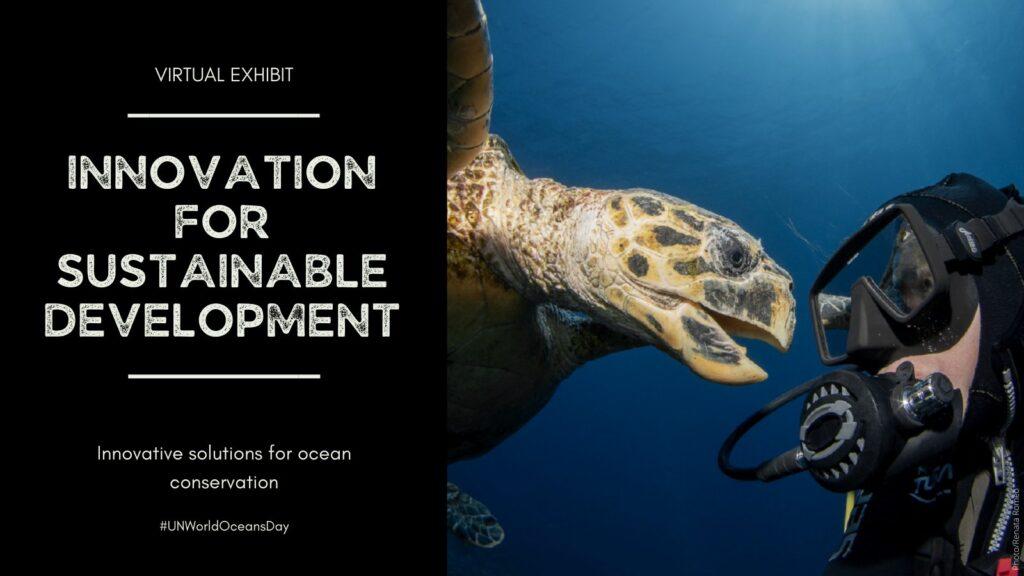 Oceans and marine virtual exhibit.