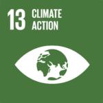 SDG 13 icon