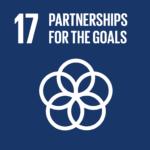 SDG 17 icon
