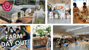 City Sprout Farm Day Out Easter Editio