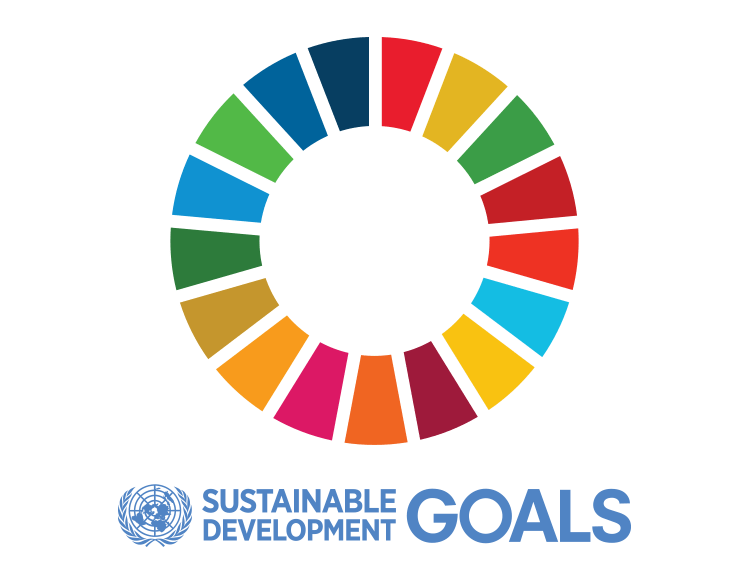 sustainable development goals icon