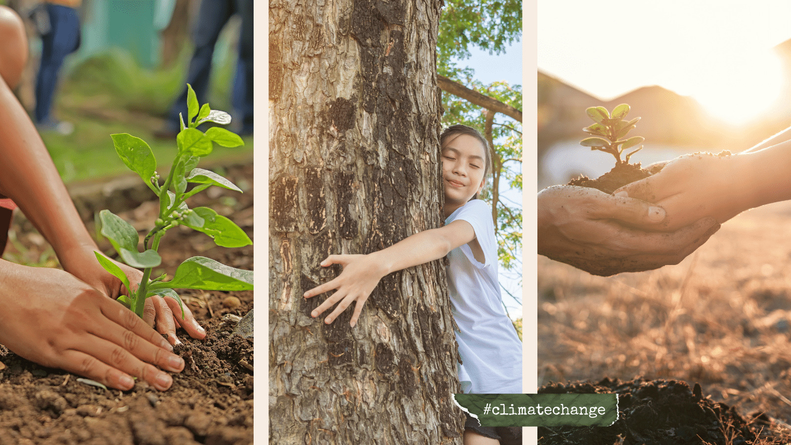 Read more about the article Climate Action Week 2021 : Week-Long Climate-Positive Action For All !