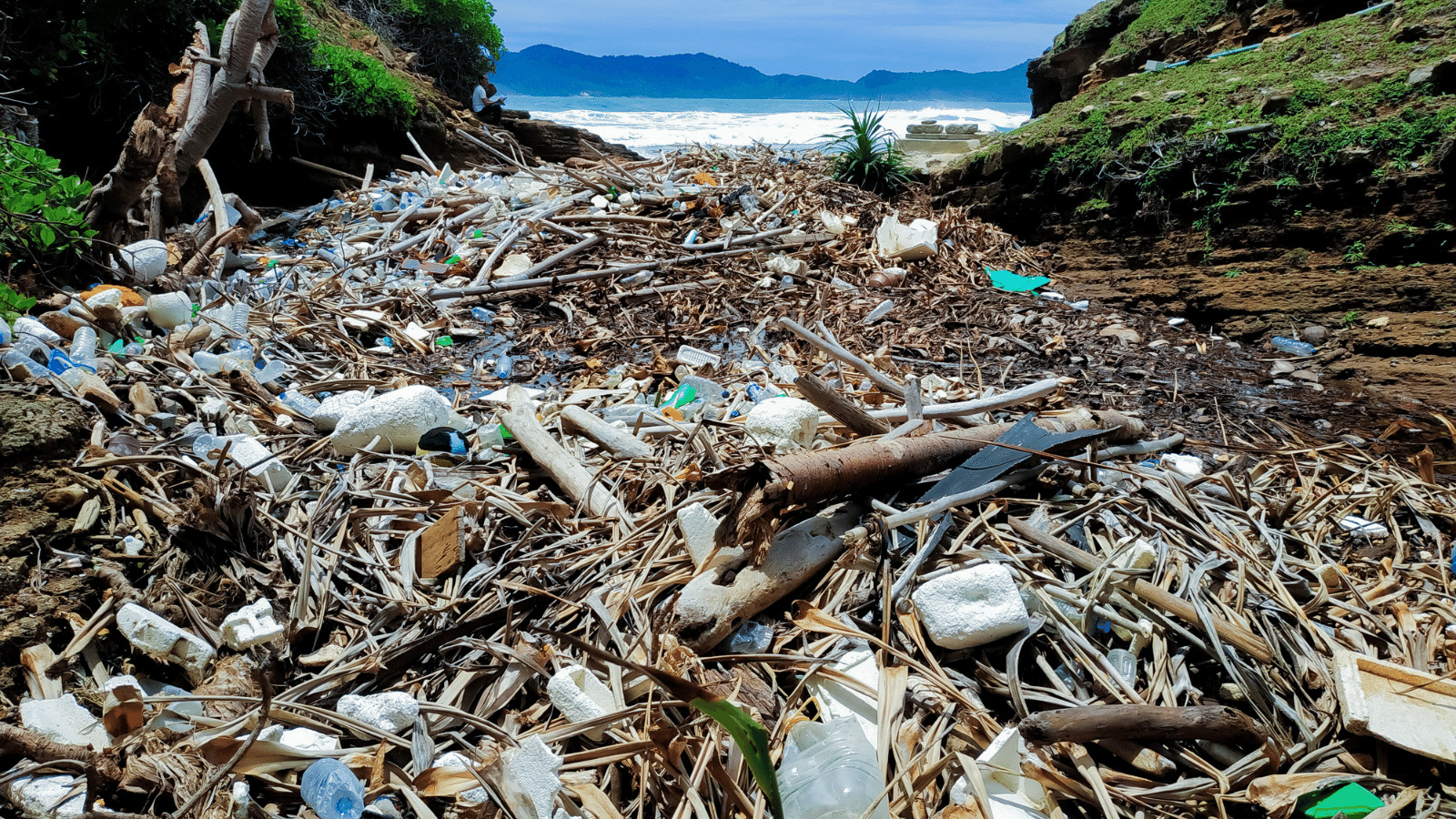 Read more about the article Zero Plastic Cities Working Towards Sustainable Future