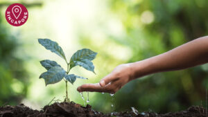 mindful farming course