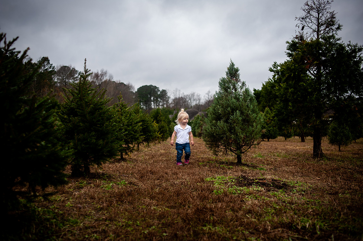 girl standing in row of Christmas trees