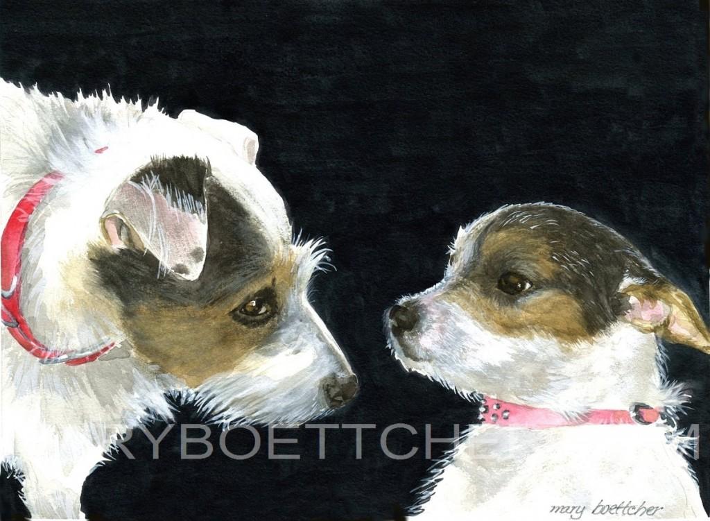 Ann's Dogs