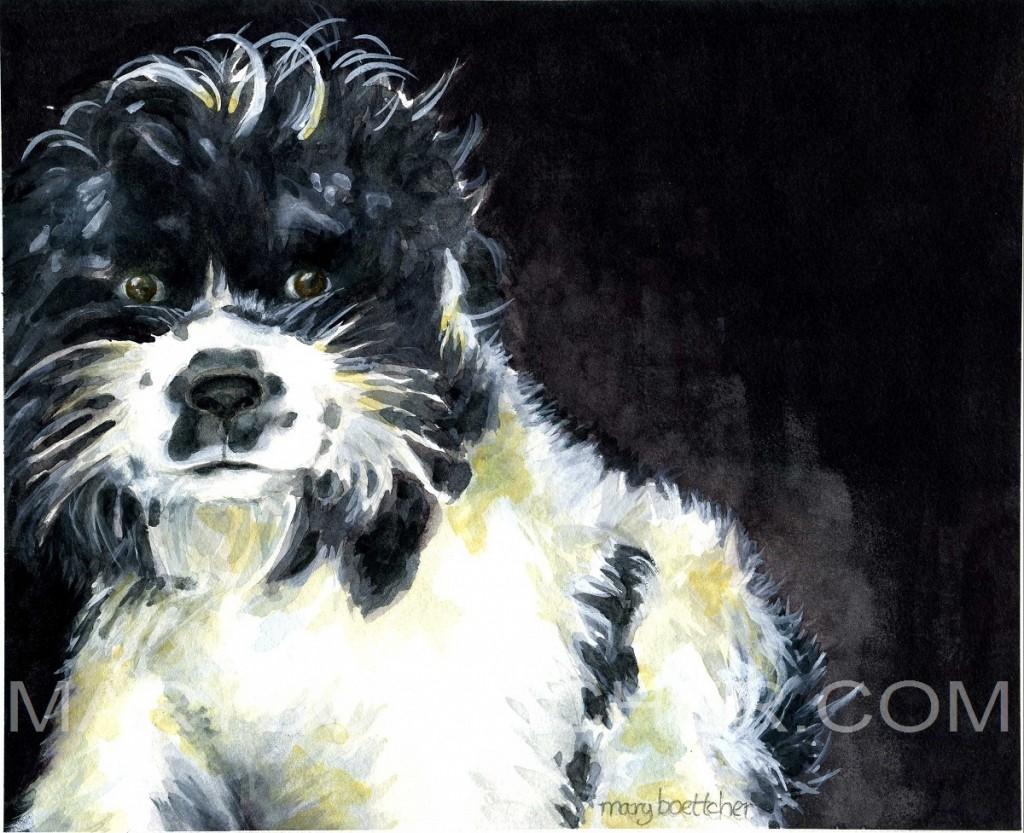 lynn's dog
