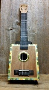 Click the image above to view the ukulele lesson entry in the knowledgebase!