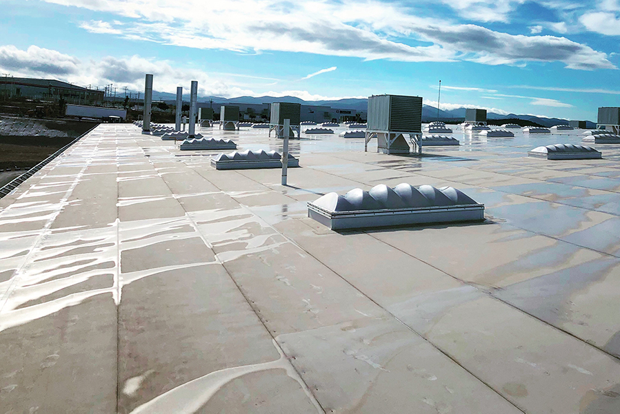 How To Deal With Flat Roof Blisters