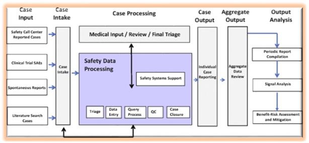 Case Processing