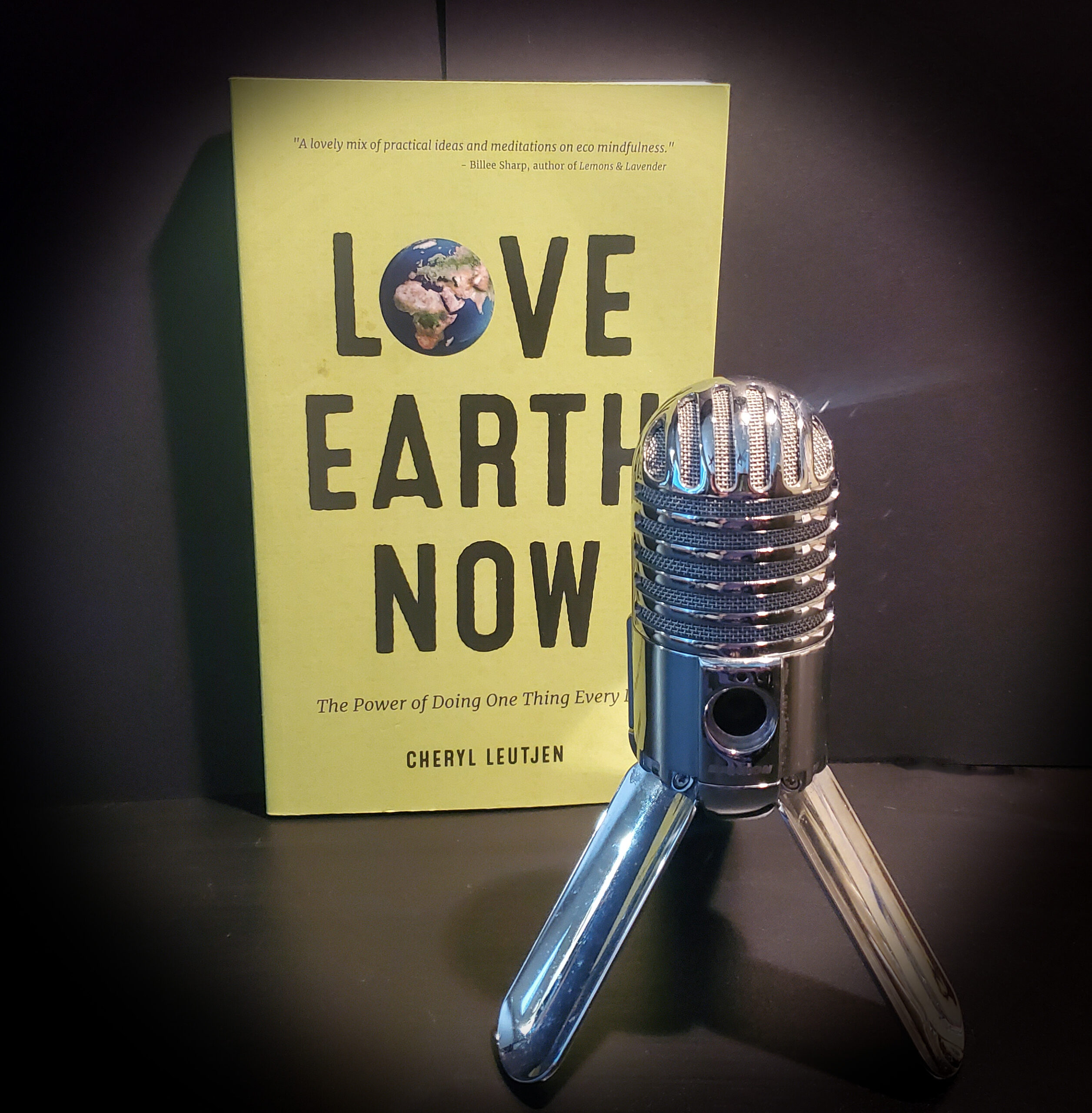 Love Earth Now book