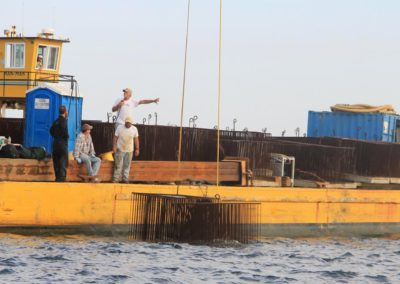 DMR cages for artificial reef