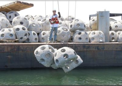 Bay Balls will become artificial reefs