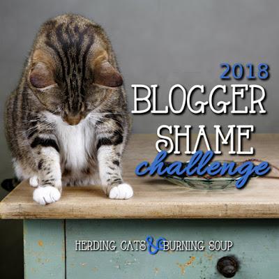 Blogger Shame Challenge 2018