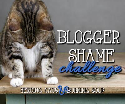 Blogger Shame Challenge 2019