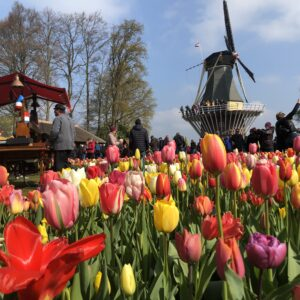 Paris, Brussels and Amsterdam: 3 countries in 4 days