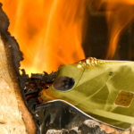 War Against Kratom Intensifying: T1 Payments, The Kratom Industry's Only Major Credit Card Processor Has Unexpectedly Shutdown, Causing Major Losses And Reduced Capabilities For Vendors Industry-Wide