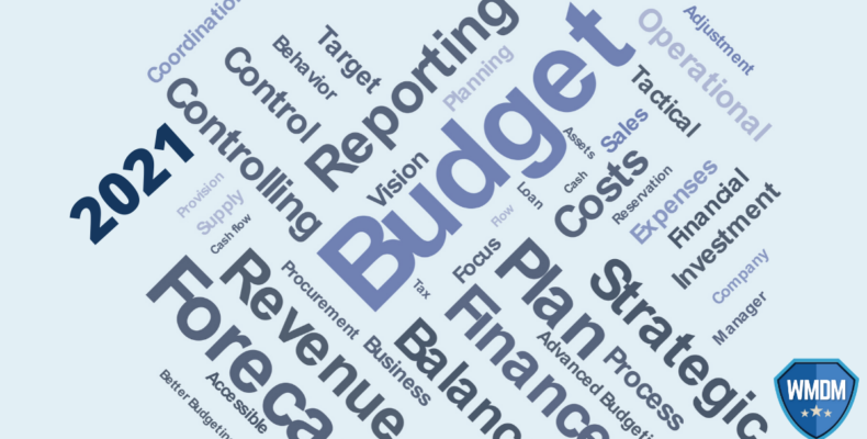 Budget - Word Map showing Budget, Plan, Revenue, Forecast, Reporting