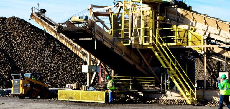 Image of equipment at a sugar beet harvest facility