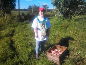 Emma picking apples Owls Landing Farm