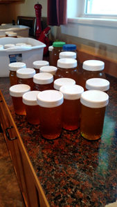 Honey All Packed Readly to Sell