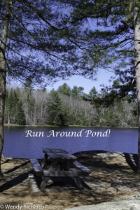 I still don't see how you are supposed to run around this pond.