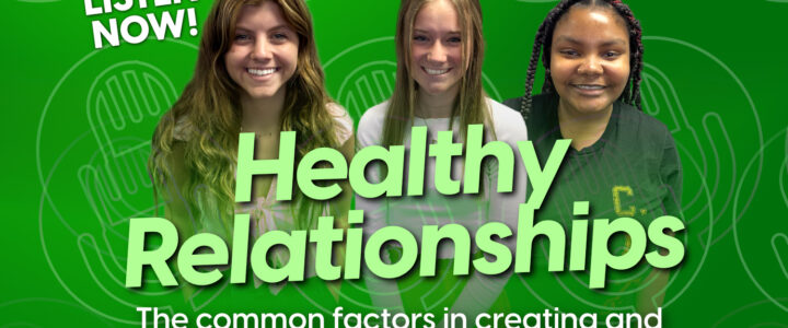 Healthy Relationships: The Common Factors