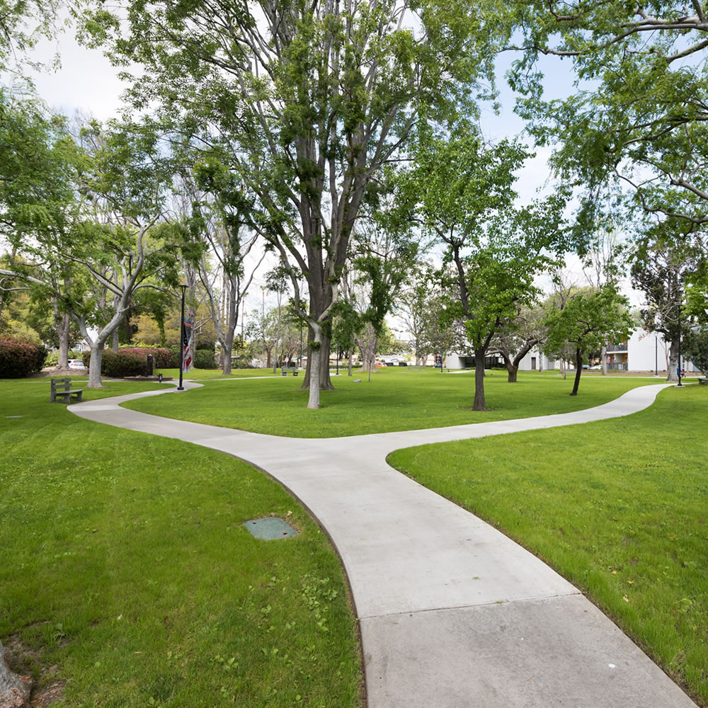 Memorial Gardens a manicured lawn with trees and paved meandering paths leading to a fountain on the left and to buildings on the right