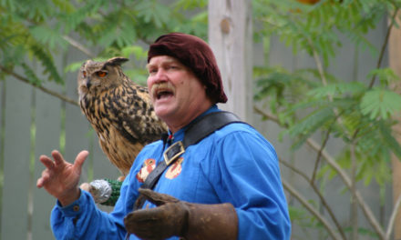 An Adult's Guide to the Renaissance Faire