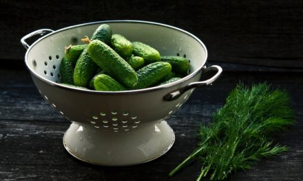 Pickled Perfection: Straight from your Backyard