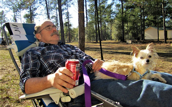RV Dogs:Pets can make great travel companions