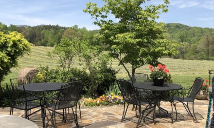 Days of Wine and Roses: Tiger Mountain Vineyards
