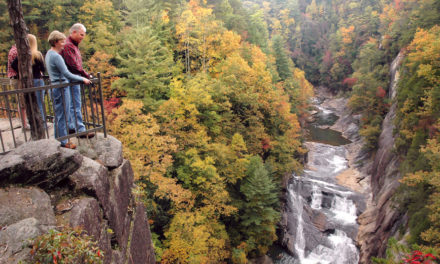 Season of Color: Autumn leaves attract thousands