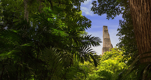 Road Scholar: 5 Must-Have Experiences in Central America