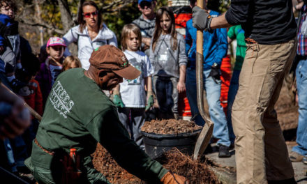 Celebrating the Great Outdoors: Trees Atlanta's Mission