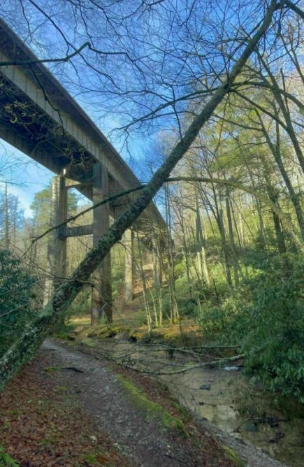 Sims Creek Trail