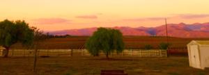 Take a road trip on the backroads of Santa Santa Maira Valley, ca