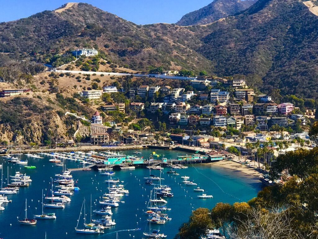 Catalina Island Oceanview
