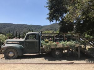 Cowgirl Wine Tractor