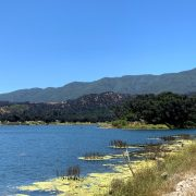 Live it Up With Lake Cachuma Camping