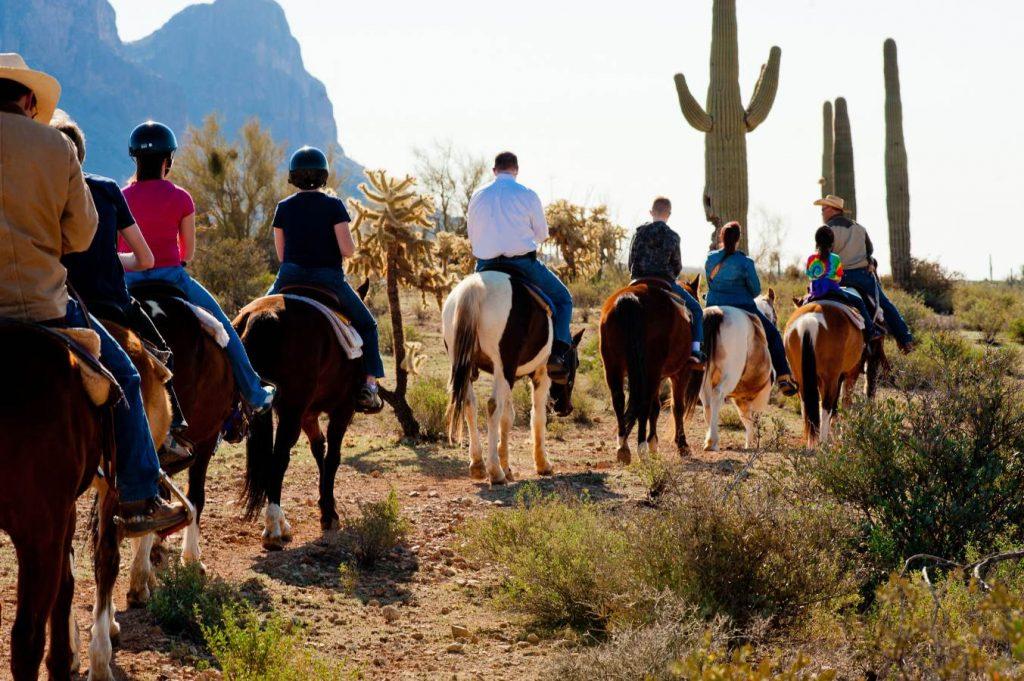 horseback riding Mesa Arizona