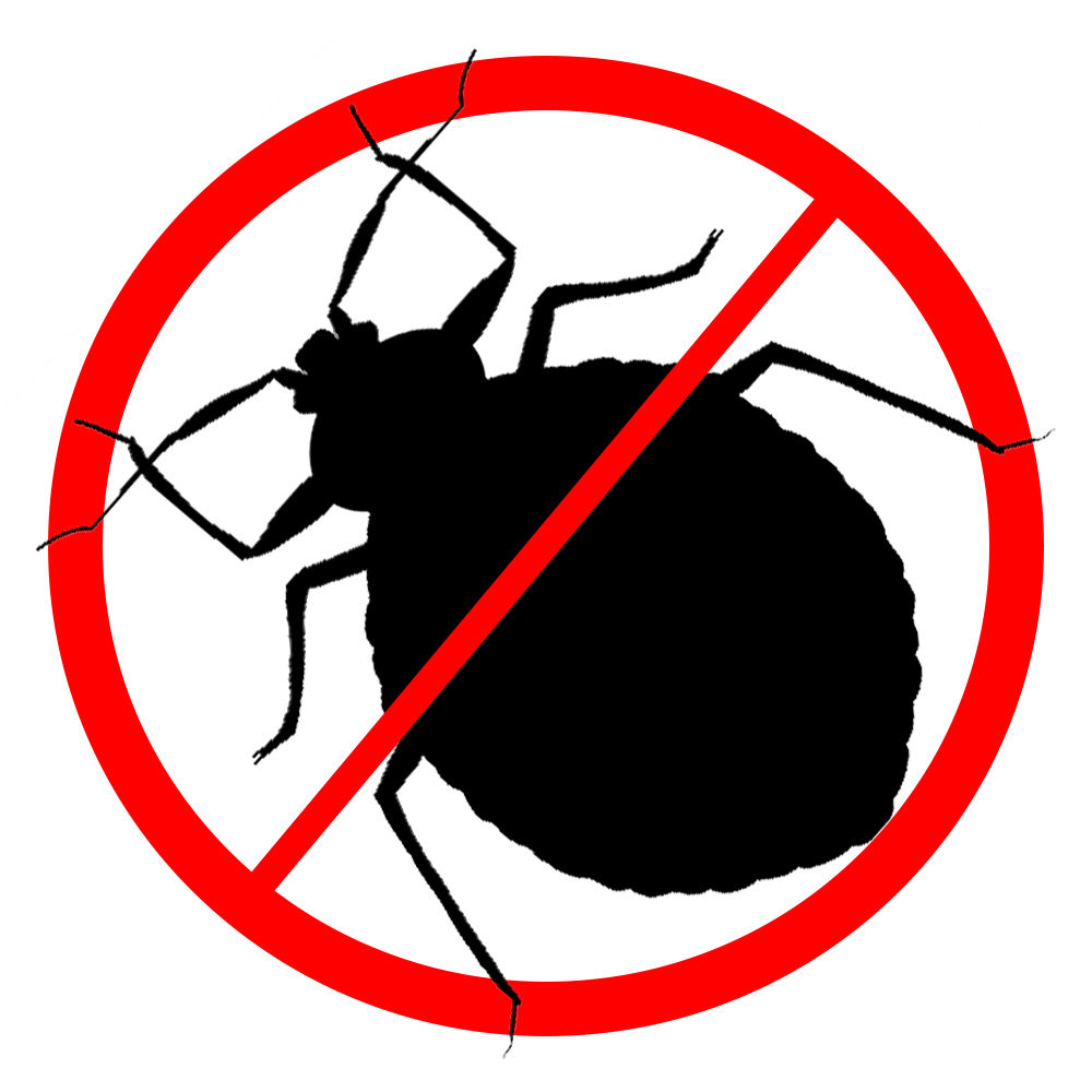 Insects & Bed Bugs