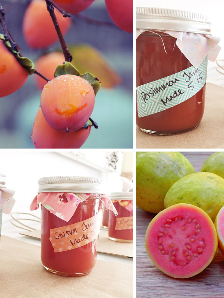 Persimmon + Guava Homemade jam | Anysley Campbell, Honymfin | Girlfriend is Better