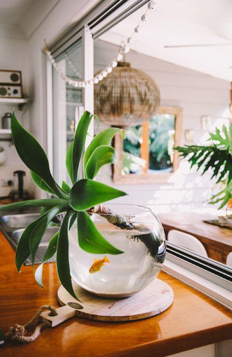 Health + Well-Being Feng Shui | water + plant decor idea | Girlfriend is Better