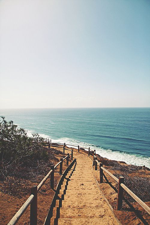 La Jolla beach hike   Torrey Pines Natural Reserve   Girlfriend is Better