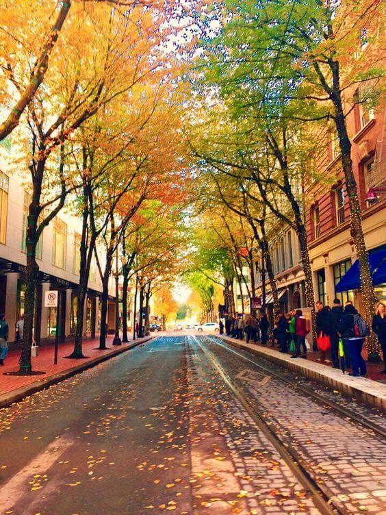 Portland, Oregon travel guide   Girlfriend is Better